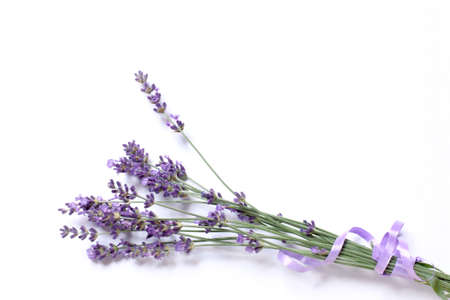 Lavender flowers tied with a purple ribbon on a light surface. bouquet for gentle congratulations