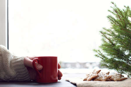 hand in a sweater holds a red mug next to a Christmas tree and cookies on the background of the window. Christmas warming drink
