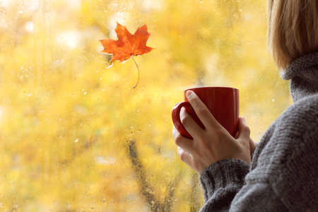 red mug in hand, when behind is window is rain and maple leaf. warming home atmosphere in autumn weather Reklamní fotografie