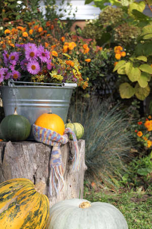 pumpkin in a scarf among the composition decorating the yard. autumn still life in the backyard