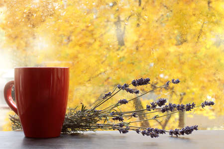 red mug and a bouquet of lavender on a table opposite a window with raindrops and yellow trees. flavored autumn drink