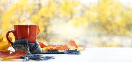 red mug with a blue scarf on a table with autumn leaves on the background of a window after the rain. warming drinks for a warm mood