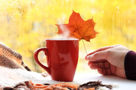 red cup and hand with a maple leaf against the background of a blurred window with an autumn rainy landscape. cozy. warming atmosphere with mood 免版税图像