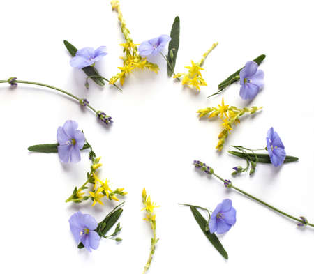 circular arrangement of flax and lavender with empty space inside. congratulatory frame of flowers Foto de archivo