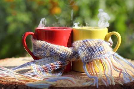 a pair of mugs together in a scarf on a table in a garden on a summer morning. warming drink to start the day 免版税图像