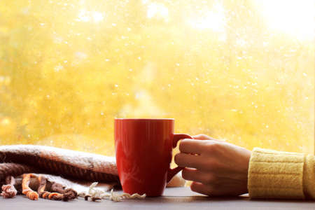 red mug in hand next to a plaid on the background of a window with sunlight after rain. autumn warming drink