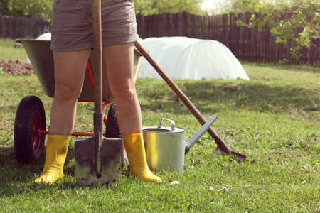 gardener with a shovel on the background of a wheelbarrow and a watering can with a rake in the garden. hot summer work in the village