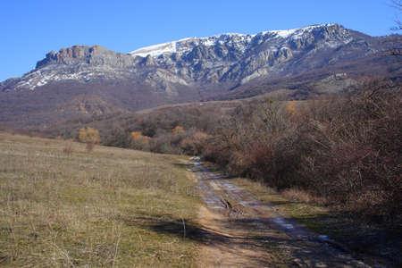 earth road: strada in terra si allontana la distanza pareti rocciose di Demerdji massiccia, Crymea, Ucraina