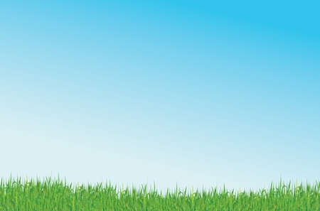 green grass and blue sky vector background Stock Vector - 3570210