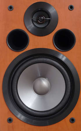 dolby: 2-way wooden speaker close up