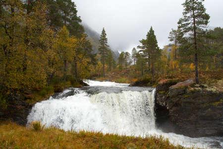 murmur: waterfall in the autumn woods, norway  Stock Photo