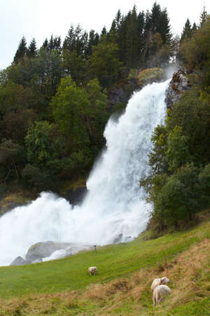 ewes: waterfall in the autumn woods, norway  Stock Photo