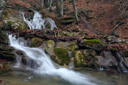 forest waterfall and stones overgrown with moss  photo