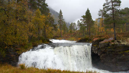 waterfall in the autumn woods, norway Stock Photo - 6162475