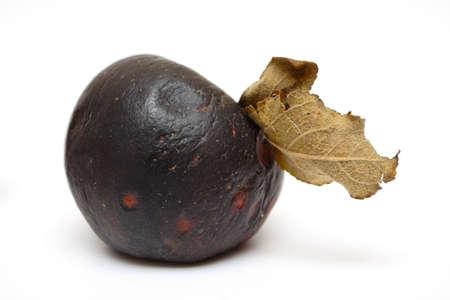 apple pourri noir isolé sur un fond blanc
