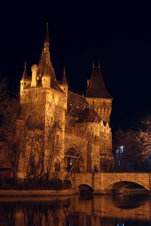 lampe: beautiful castle  in the Budapest at the night time illuminated by a lot of lights  Stock Photo
