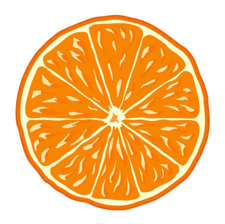 orange slice: orange slice isolated vector background icon Illustration