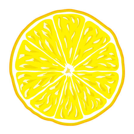 lemon slice: lemon slice isolated vector background icon