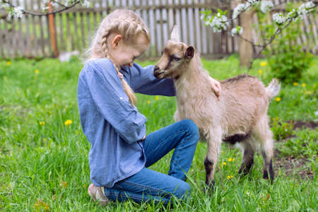 yeanling: little girl with a goatling in the garden, spring
