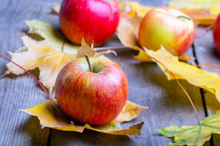 apple and orange: autumn background - maple leaves and apples on a wooden table Stock Photo