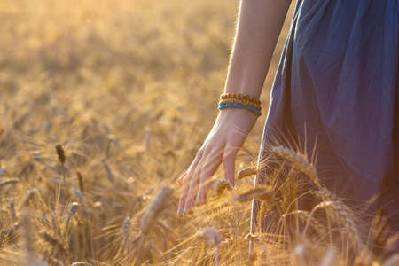 girl walking through the field and touching a wheat with her hand
