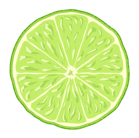 lime slice: lime slice isolated vector background icon