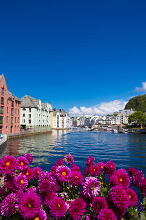 houses street: flowers growing at the streets of famous norwegian town Alesund