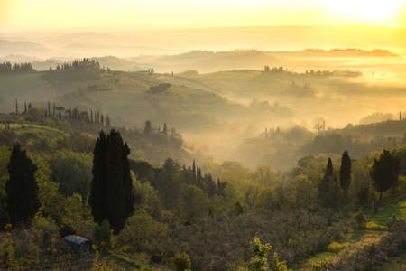 fog and typical Tuscan landscape - a view of a villa on a hill, a cypress alley and a valley with vineyards, province of Siena. Tuscany, Italy Stock Photo