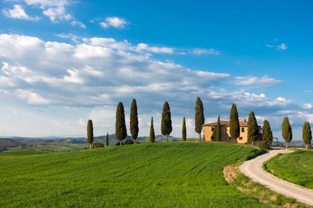 tuscany landscape with old house and cypresses at sunny day