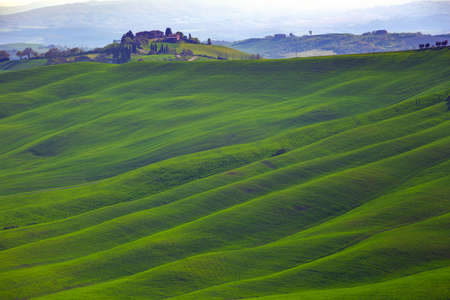 typical Tuscan landscape - a view of a villa on a hill and green fields at sunny day. province of Siena. Tuscany, Italy Stock Photo