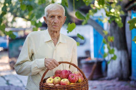 portrait of smiling senior man with a basket of apples Stock Photo