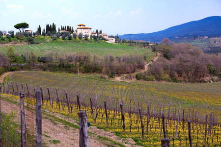 view of  typical Tuscan landscape and a valley with vineyards, in the province of Siena. Tuscany, Italy  Banco de Imagens