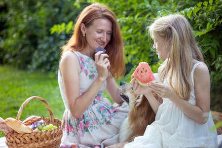 Summer - happy family at a picnic.  Mom, daughter and dog corgi at a picnic