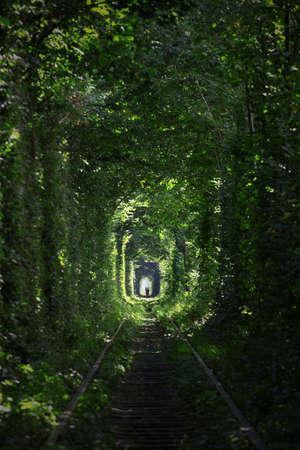 túnel del amor en Ucrania Foto de archivo
