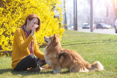 fun training - girl and dog corgi walking in the park