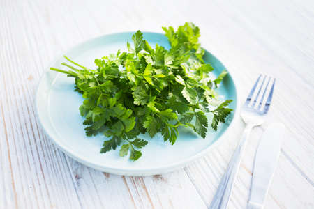 vegetarian and vegan menu - a bunch of parsley on a plate. healthy diet
