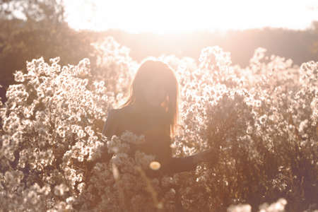girl with flowers against the setting sun in the autumn afternoon. dandelion fluff in the autumn park. Stok Fotoğraf - 129685802
