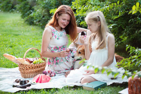 Summer - happy family at a picnic. Mom, daughter and dog corgi at a picnic