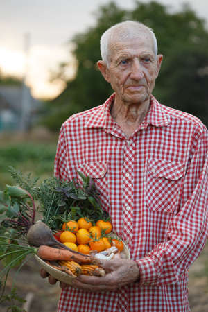 portrait of smiling senior man in the garden with a bowl of vegetables from your garden