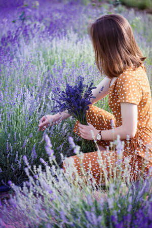 Provence - girl in a hat collects a bouquet of lavender. France Imagens