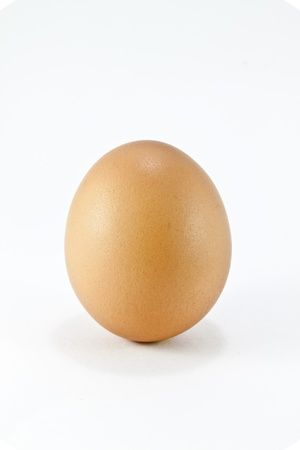 egg on a white background photo