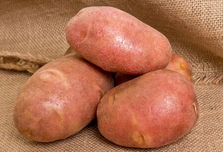 specificity: bunch of potatoes on burlap background