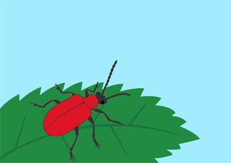 Red lily bug on leaf. Vector illustration