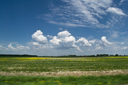fluffy clouds: Fluffy clouds above the field