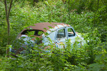 rusty car: Old rusty car in the bushes Stock Photo