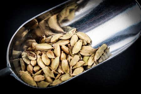 cardamomum
