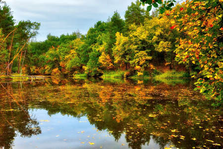 Scenic lake in autumn forest overcast day photo