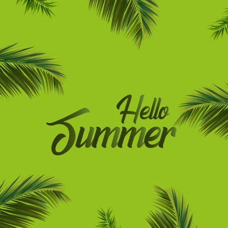 Summer background with green palm leaves. Vector