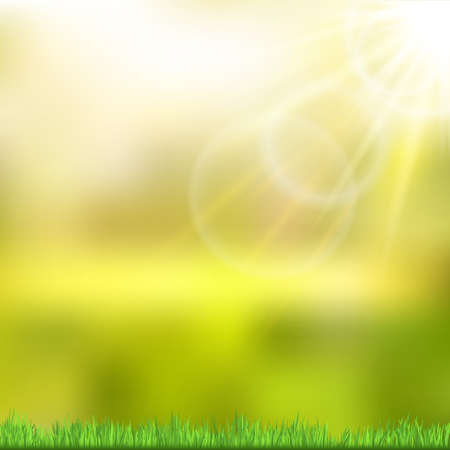 Sunny background with green nature. Vector