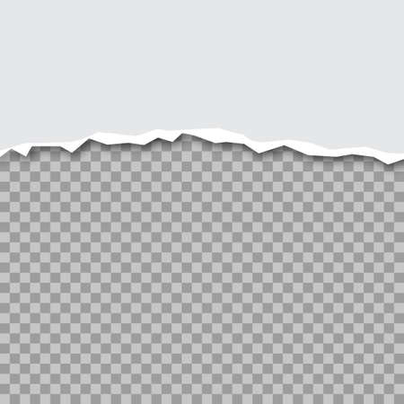 Vector illustration of ripped paper with transparent background. Vector